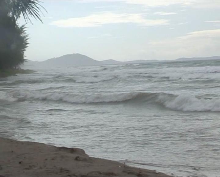 คลื่นลมแรงซัดต้นสนหาดแม่รำพึงล้ม