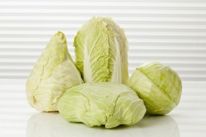Variety of cabbages, close up
