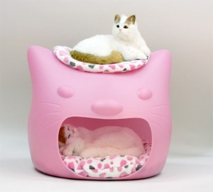 funny-cat-bed-and-stool-in-one-2