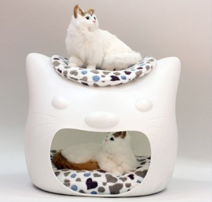 funny-cat-bed-and-stool-in-one-6
