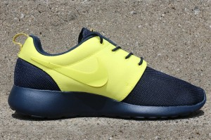 NIKE-ROSHE-RUN-SPLIT-PACK-PT-2-8